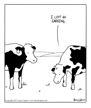 Been Winter - Cow Concerns